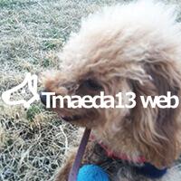 Tmaeda13web